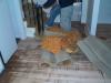 foyer-stair-before