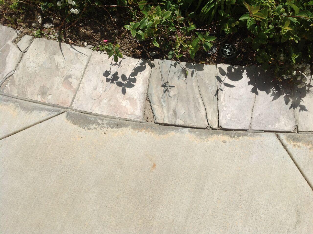 OC Backyard Concrete