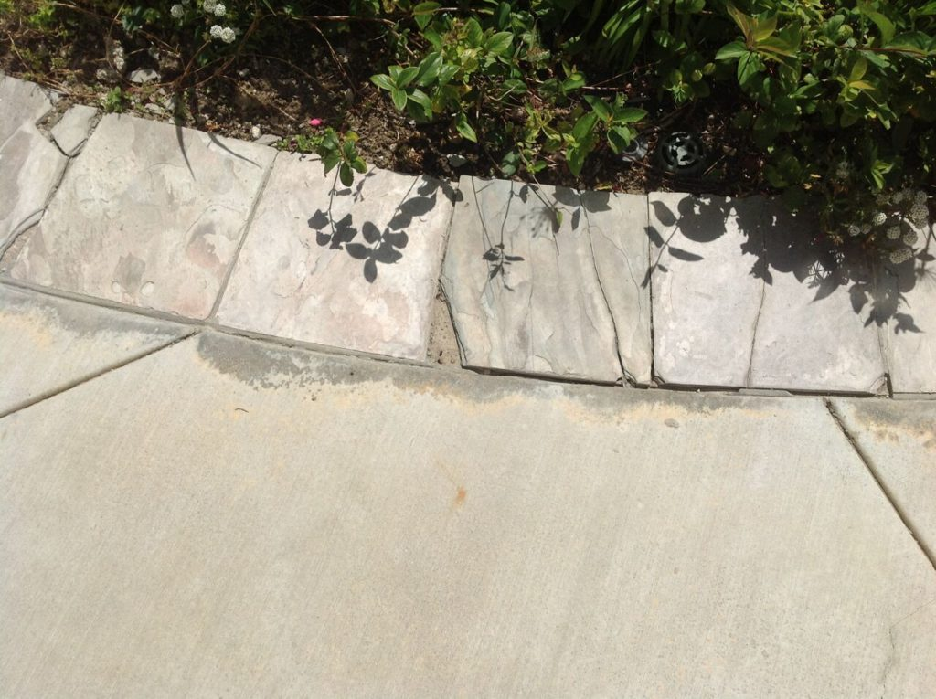 stained concrete in orange county